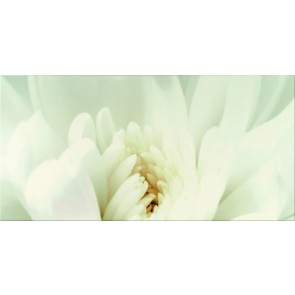 Декор DIAGO INSERTO FLOWER C 29.7X60