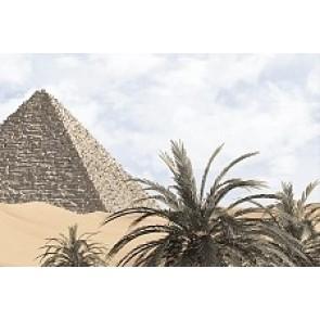 Декор Luxor 20x30 - 5 голубой