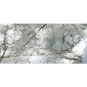 Декор Magia 23x50 серый - 2